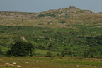collines rocheuses du parc national de Dartmoor dans le Devon